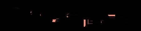 Turtle Enviro Oriflo logo